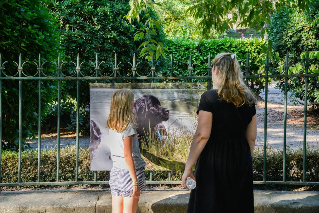 expo Royal Canin jardin d ete 2018 RB hd-4513